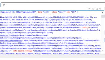 Internet Explorer debug